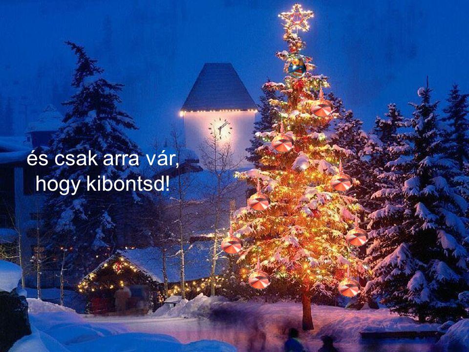 És végül azt kívánom, hogy rájöjj, hogy mindez az ajándék már benned él,