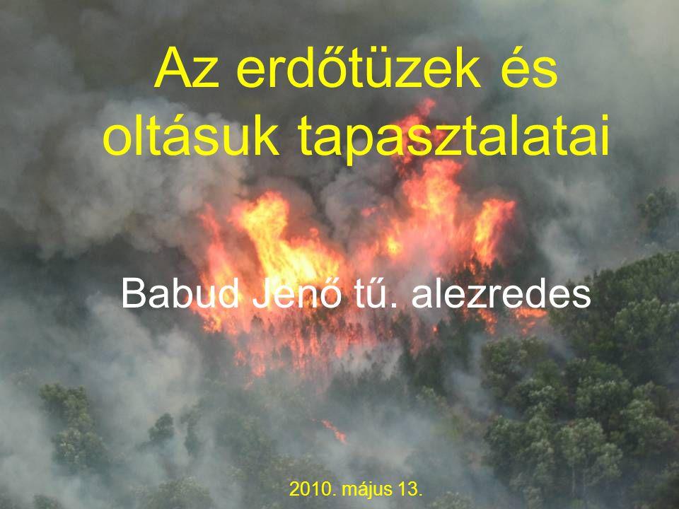 Az erdőtüzek és oltásuk tapasztalatai Babud Jenő tű. alezredes 2010. május 13.