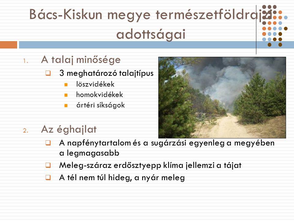 Bács-Kiskun megye természetföldrajzi adottságai 1.