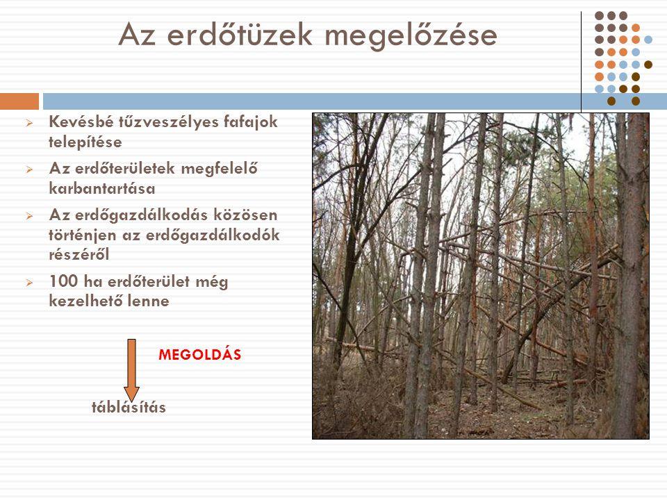 Az erdőtüzek megelőzése  Kevésbé tűzveszélyes fafajok telepítése  Az erdőterületek megfelelő karbantartása  Az erdőgazdálkodás közösen történjen az erdőgazdálkodók részéről  100 ha erdőterület még kezelhető lenne MEGOLDÁS táblásítás