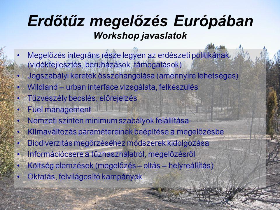 Erdőtűz megelőzés Európában Workshop javaslatok Megelőzés integráns része legyen az erdészeti politikának (vidékfejlesztés, beruházások, támogatások) Jogszabályi keretek összehangolása (amennyire lehetséges) Wildland – urban interface vizsgálata, felkészülés Tűzveszély becslés, előrejelzés Fuel management Nemzeti szinten minimum szabályok felállítása Klímaváltozás paramétereinek beépítése a megelőzésbe Biodiverzitás megőrzéséhez módszerek kidolgozása Információcsere a tűzhasználatról, megelőzésről Költség elemzések (megelőzés – oltás – helyreállítás) Oktatás, felvilágosító kampányok