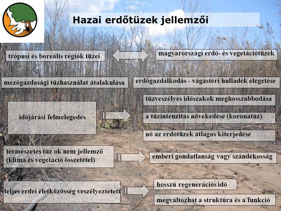 trópusi és boreális régiók tüzei magyarországi erdő- és vegetációtüzek mezőgazdasági tűzhasználat átalakulása erdőgazdálkodás - vágástéri hulladék elégetése időjárási felmelegedés tűzveszélyes időszakok meghosszabbodása a tűzintenzitás növekedése (koronatűz) nő az erdőtüzek átlagos kiterjedése természetes tűz ok nem jellemző (klíma és vegetáció összetétel) emberi gondatlanság vagy szándékosság teljes erdei életközösség veszélyeztetett hosszú regenerációs idő megváltozhat a struktúra és a funkció Hazai erdőtüzek jellemzői