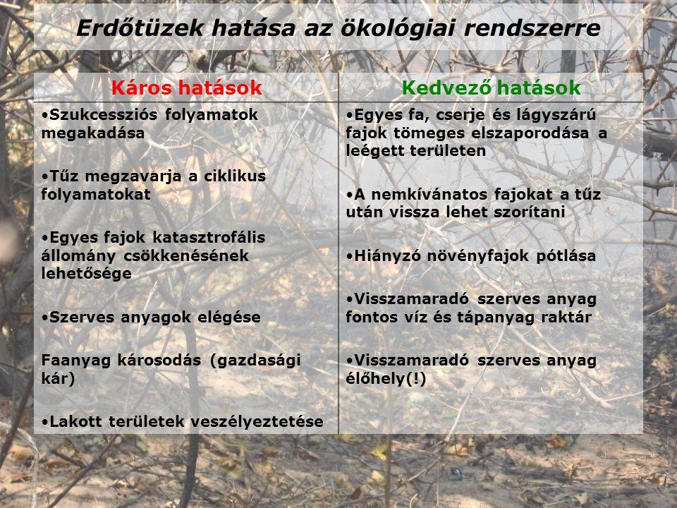 Erdőtüzek hatása az ökológiai rendszerre Káros hatásokKedvező hatások Szukcessziós folyamatok megakadása Tűz megzavarja a ciklikus folyamatokat Egyes fajok katasztrofális állomány csökkenésének lehetősége Szerves anyagok elégése Faanyag károsodás (gazdasági kár) Lakott területek veszélyeztetése Egyes fa, cserje és lágyszárú fajok tömeges elszaporodása a leégett területen A nemkívánatos fajokat a tűz után vissza lehet szorítani Hiányzó növényfajok pótlása Visszamaradó szerves anyag fontos víz és tápanyag raktár Visszamaradó szerves anyag élőhely(!)