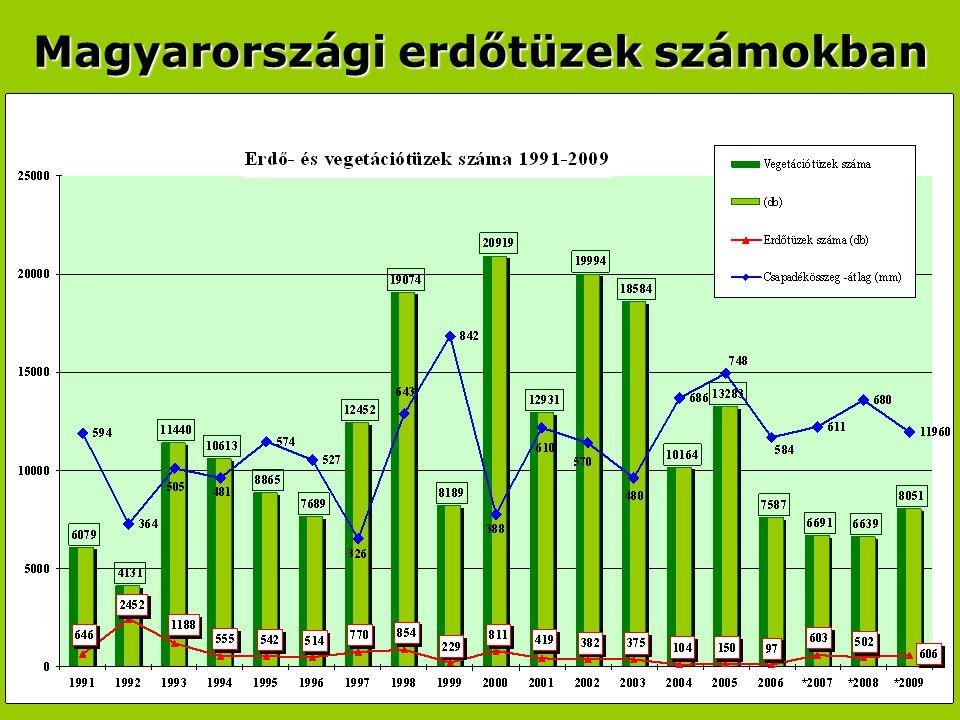 Magyarországi erdőtüzek számokban