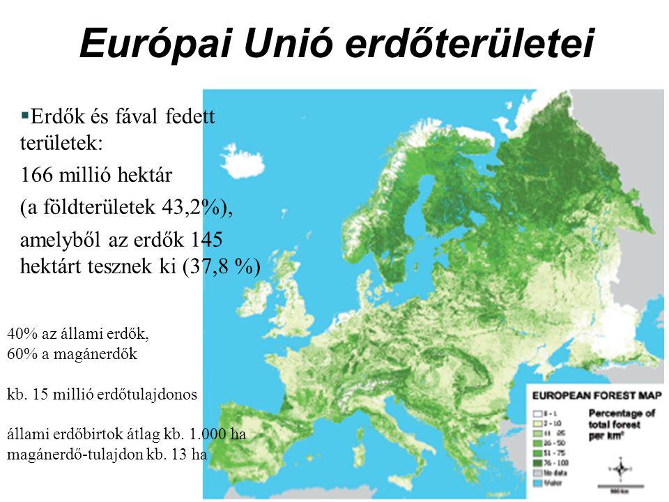 Európai Unió erdőterületei  Erdők és fával fedett területek: 166 millió hektár (a földterületek 43,2%), amelyből az erdők 145 hektárt tesznek ki (37,8 %) 40% az állami erdők, 60% a magánerdők kb.