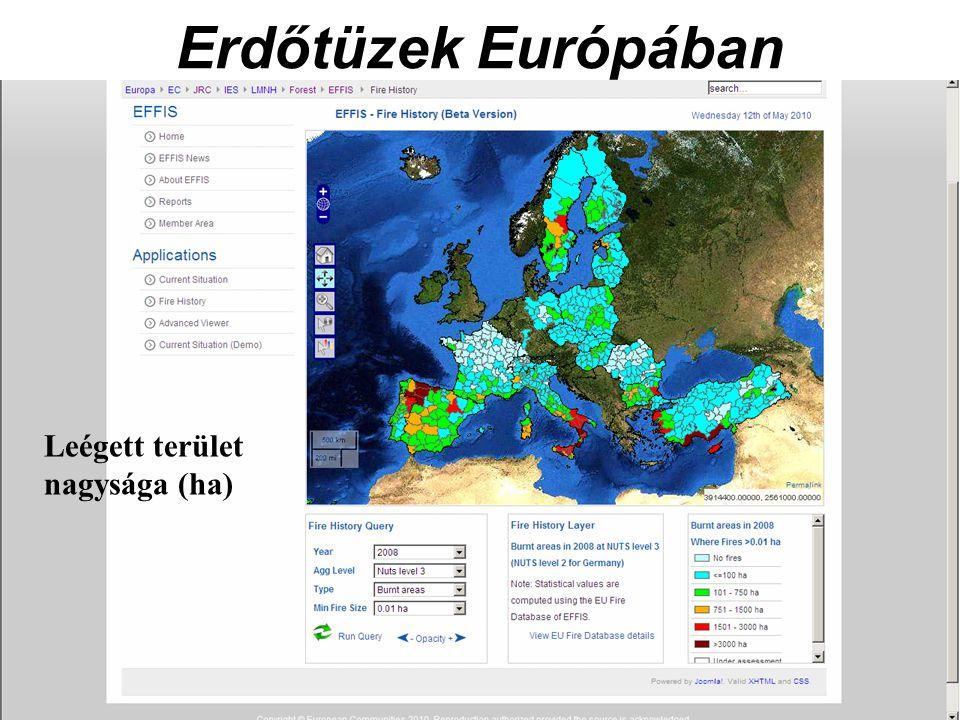Erdőtüzek Európában Leégett terület nagysága (ha)