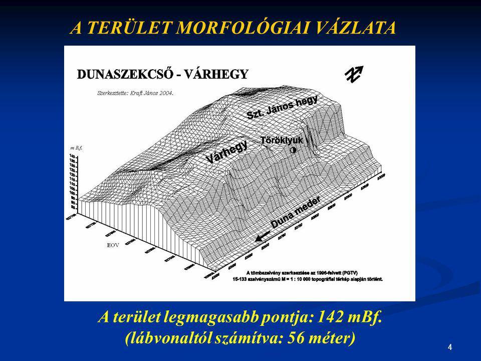 4 A TERÜLET MORFOLÓGIAI VÁZLATA A terület legmagasabb pontja: 142 mBf. (lábvonaltól számítva: 56 méter)