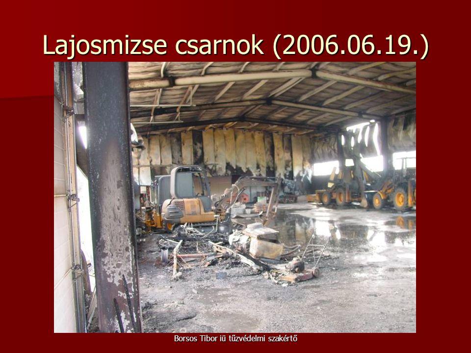 Borsos Tibor iü tűzvédelmi szakértő Lajosmizse csarnok (2006.06.19.)