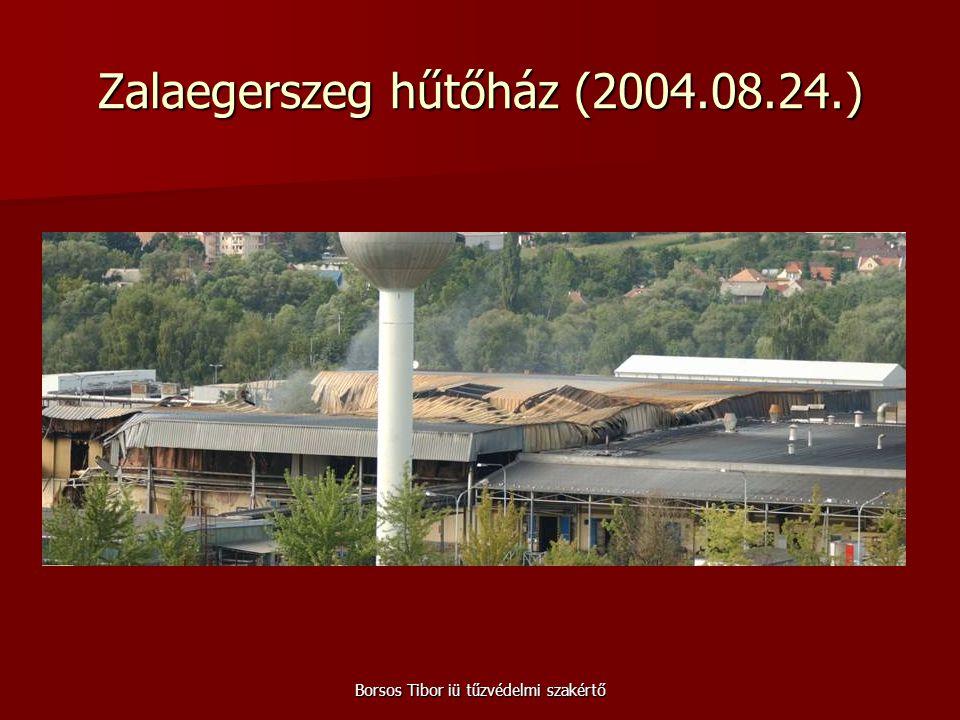 Borsos Tibor iü tűzvédelmi szakértő Zalaegerszeg hűtőház (2004.08.24.)