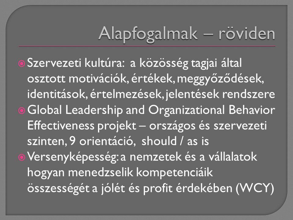  Szervezeti kultúra: a közösség tagjai által osztott motivációk, értékek, meggyőződések, identitások, értelmezések, jelentések rendszere  Global Leadership and Organizational Behavior Effectiveness projekt – országos és szervezeti szinten, 9 orientáció, should / as is  Versenyképesség: a nemzetek és a vállalatok hogyan menedzselik kompetenciáik összességét a jólét és profit érdekében (WCY)