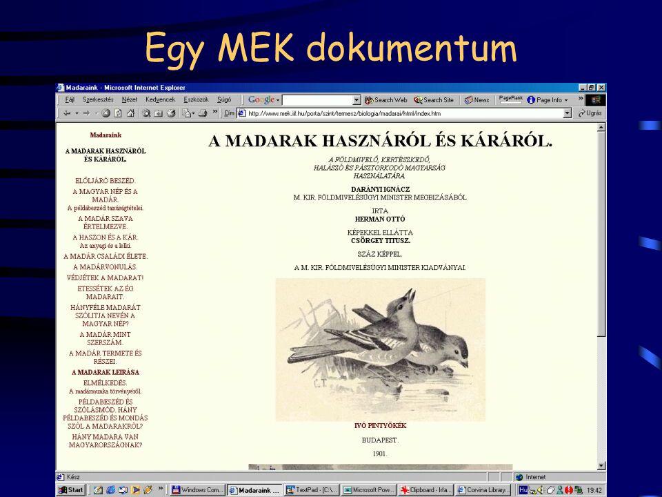 Egy MEK dokumentum