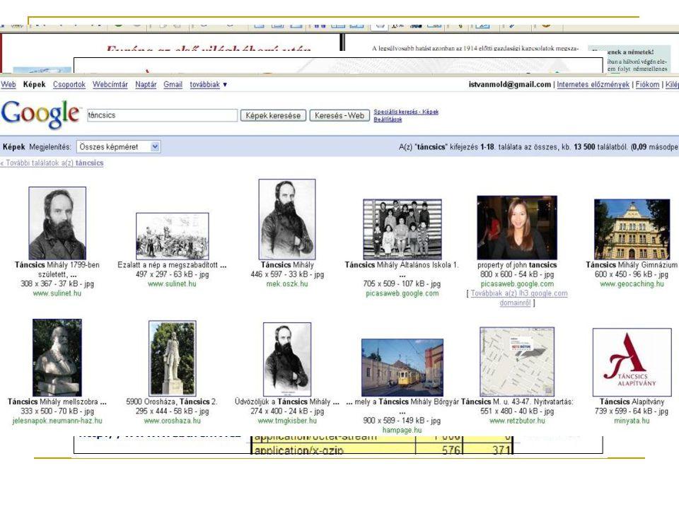 Képek az Interneten A képi információk jelentősége; - szórakozásban, oktatásban, ismeretterjesztésben - szöveg + kép (lásd pl.