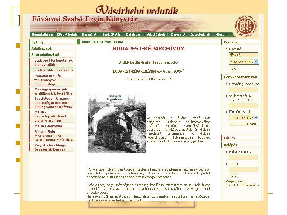 Képadatbázisok a könyvtárakban Digitalizált képi könyvtári dokumentumok; pl.