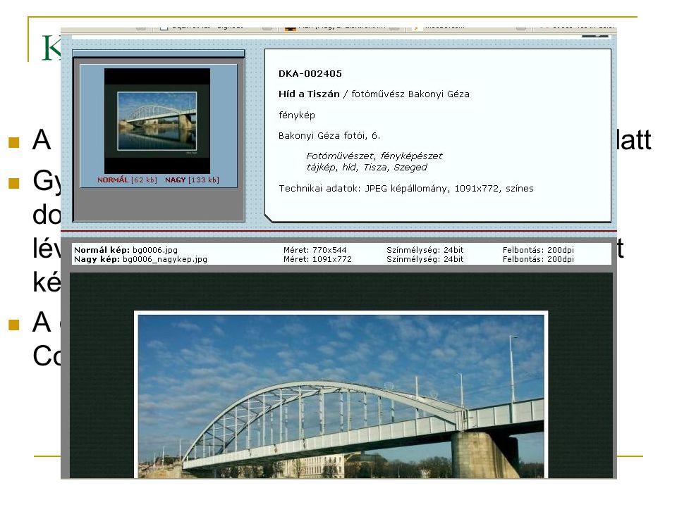 Képarchívum az OSZK-ban A MEK Egyesület támogatásával – fejlesztés alatt Gyűjtőköre: a digitálisan létrejött képi dokumentumok, Interneten, CD kiadványokon lévő, művészek, magánemberek által felajánlott képek.