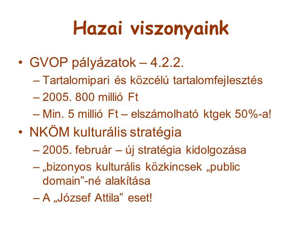 Hazai viszonyaink GVOP pályázatok – 4.2.2. –Tartalomipari és közcélú tartalomfejlesztés –2005. 800 millió Ft –Min. 5 millió Ft – elszámolható ktgek 50