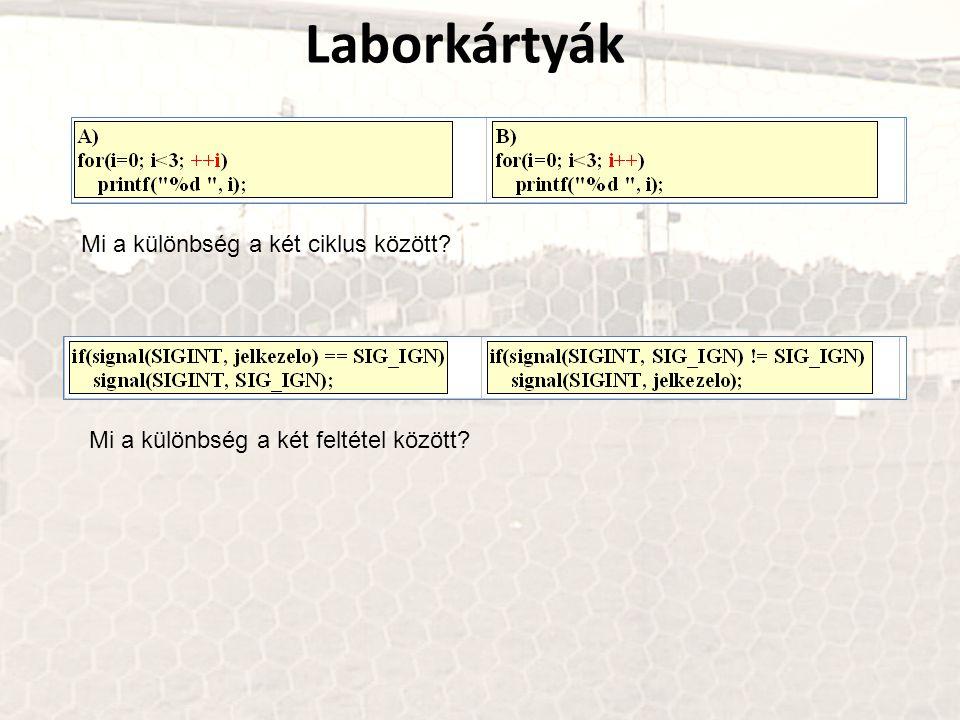Laborkártyák Mi a különbség a két ciklus között? Mi a különbség a két feltétel között?