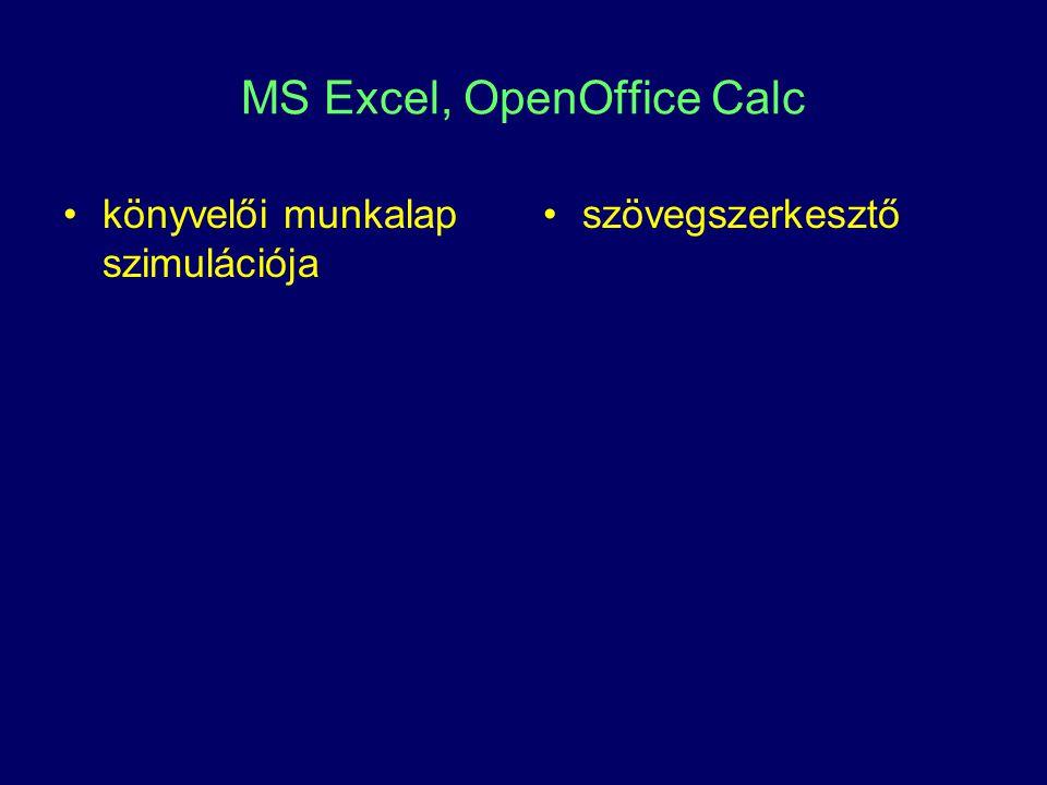 MS Excel, OpenOffice Calc könyvelői munkalap szimulációja szövegszerkesztő