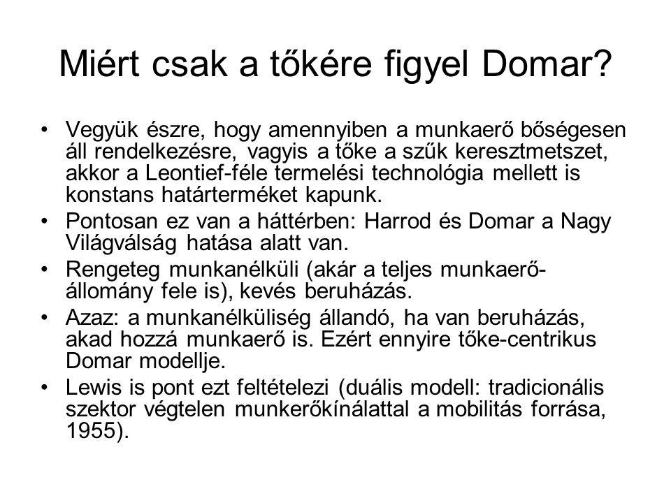 Miért csak a tőkére figyel Domar.