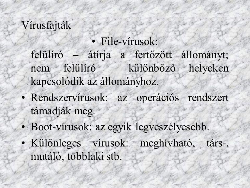 Vírusfajták File-vírusok: felülíró – átírja a fertőzött állományt; nem felülíró – különböző helyeken kapcsolódik az állományhoz.