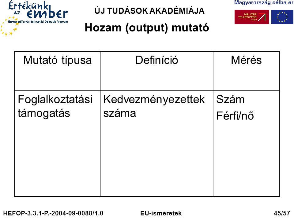 ÚJ TUDÁSOK AKADÉMIÁJA Hozam (output) mutató Mutató típusaDefinícióMérés Foglalkoztatási támogatás Kedvezményezettek száma Szám Férfi/nő HEFOP-3.3.1-P.-2004-09-0088/1.0 EU-ismeretek 45/57