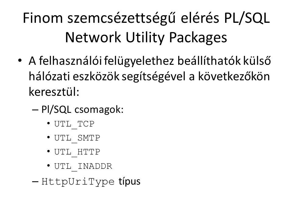 Finom szemcsézettségű elérés PL/SQL Network Utility Packages A felhasználói felügyelethez beállíthatók külső hálózati eszközök segítségével a következ