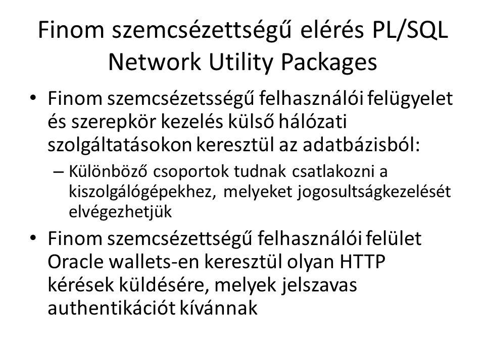 Finom szemcsézettségű elérés PL/SQL Network Utility Packages Finom szemcsézetsségű felhasználói felügyelet és szerepkör kezelés külső hálózati szolgál