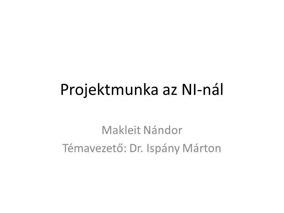 Projektmunka az NI-nál Makleit Nándor Témavezető: Dr. Ispány Márton