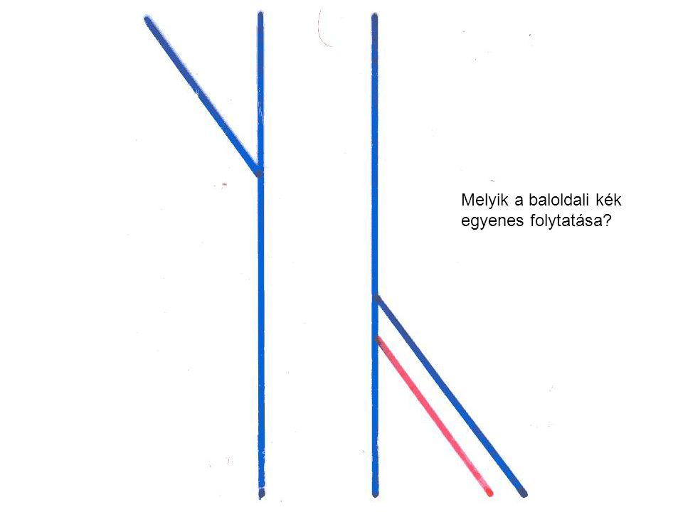 Melyik a baloldali kék egyenes folytatása?