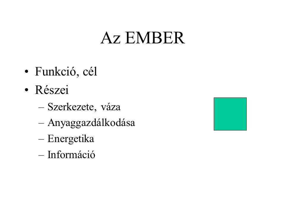 Az EMBER Funkció, cél Részei –Szerkezete, váza –Anyaggazdálkodása –Energetika –Információ