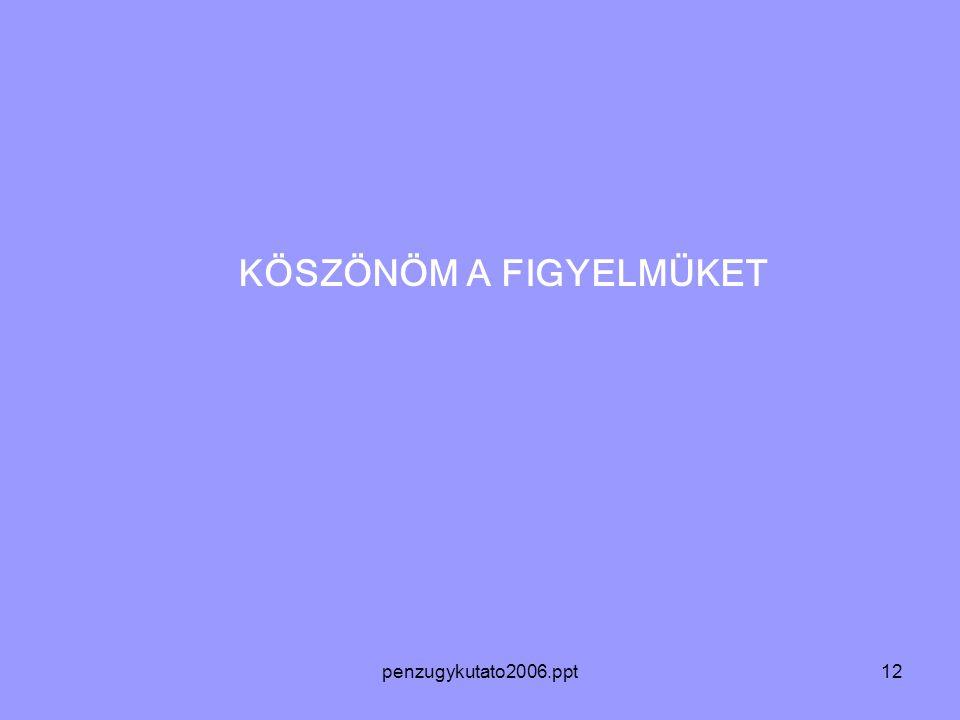 penzugykutato2006.ppt12 KÖSZÖNÖM A FIGYELMÜKET