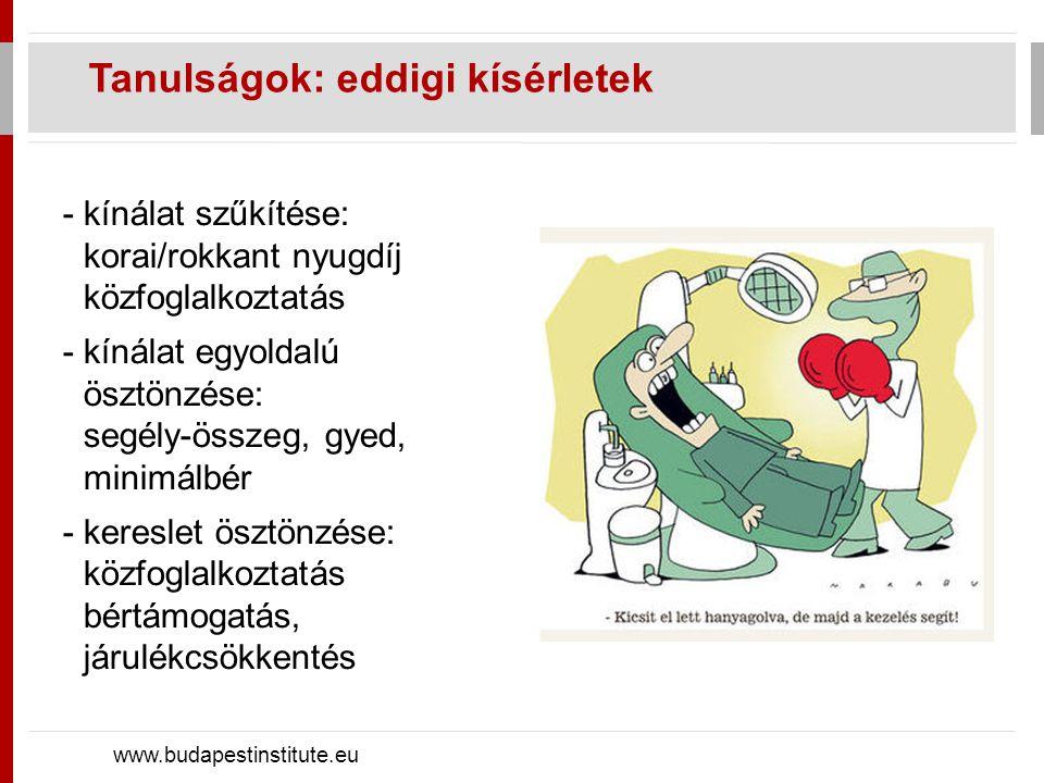 Javaslatok (1): stratégia, hatásvizsgálatok www.budapestinstitute.eu - gazdaságpolitikai stratégia, prioritás a foglalkoztatás kiszámítható makrogazdasági környezet, adminisztratív terhek csökkentése, bérköltségek csökkentése - folyamatos egyeztetés a kapcsolódó területekkel - adatgyűjtés, hozzáférési korlátok enyhítése - programok rendszeres hatásvizsgálata, korrekciója - szakmailag jól felkészült kormányzati egység ökonometriai elemzésben jártas szakemberek