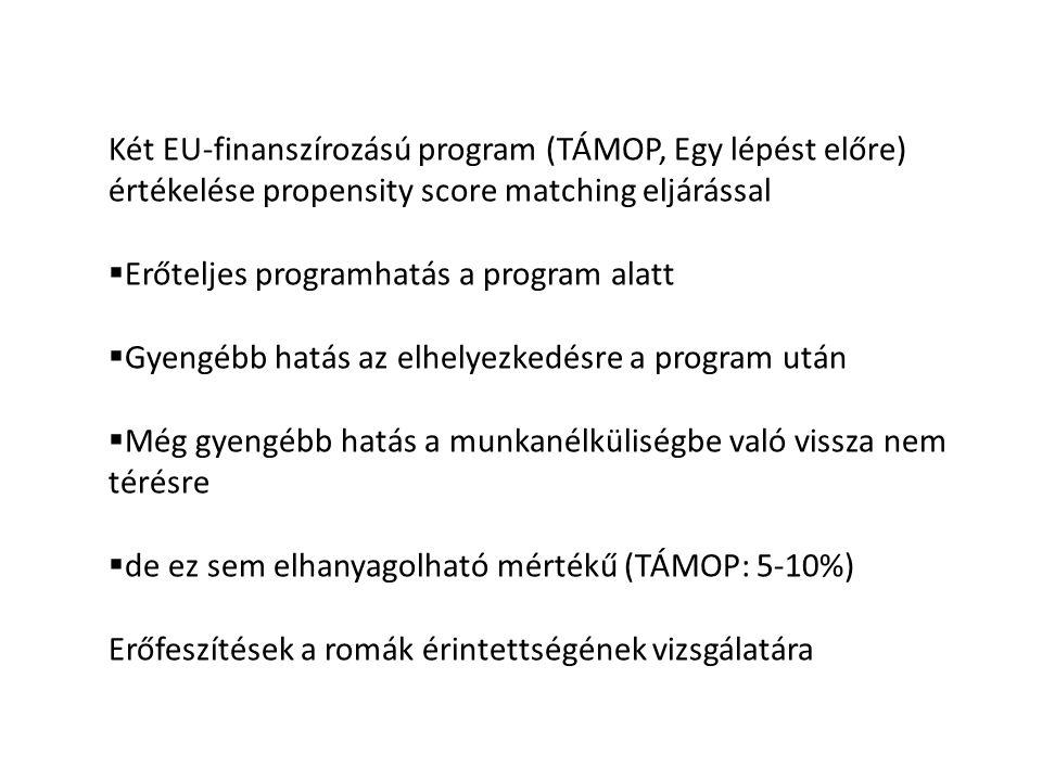 Két EU-finanszírozású program (TÁMOP, Egy lépést előre) értékelése propensity score matching eljárással  Erőteljes programhatás a program alatt  Gyengébb hatás az elhelyezkedésre a program után  Még gyengébb hatás a munkanélküliségbe való vissza nem térésre  de ez sem elhanyagolható mértékű (TÁMOP: 5-10%) Erőfeszítések a romák érintettségének vizsgálatára