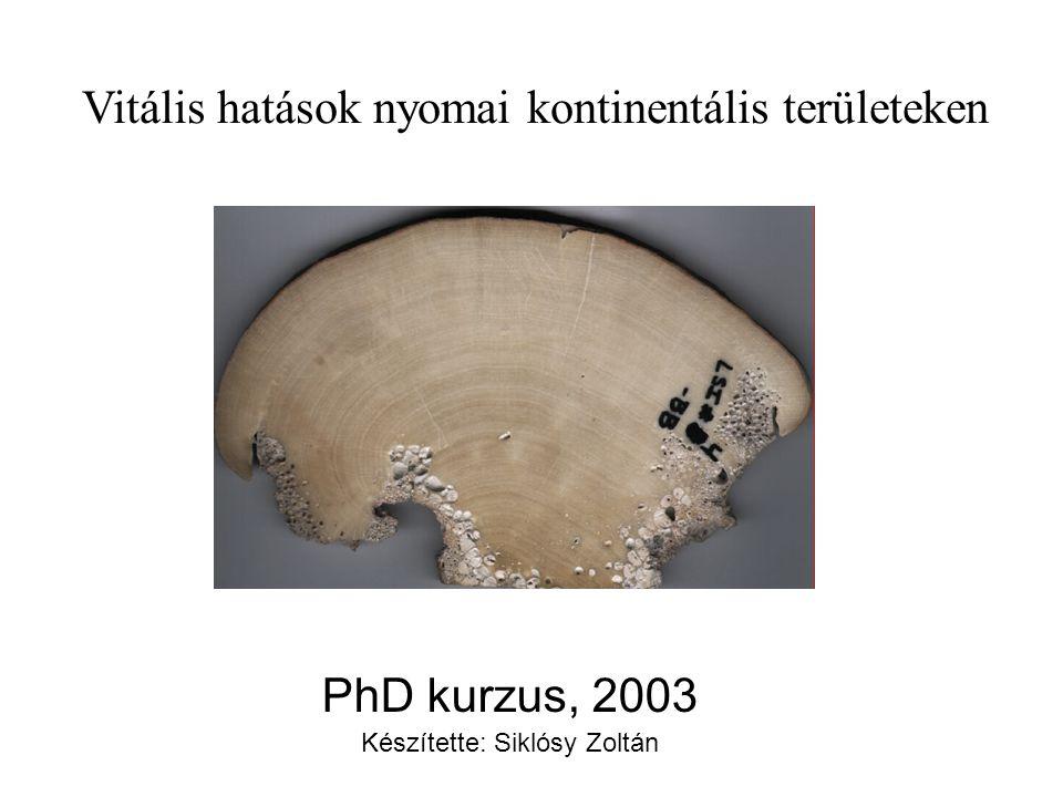PhD kurzus, 2003 Készítette: Siklósy Zoltán Vitális hatások nyomai kontinentális területeken