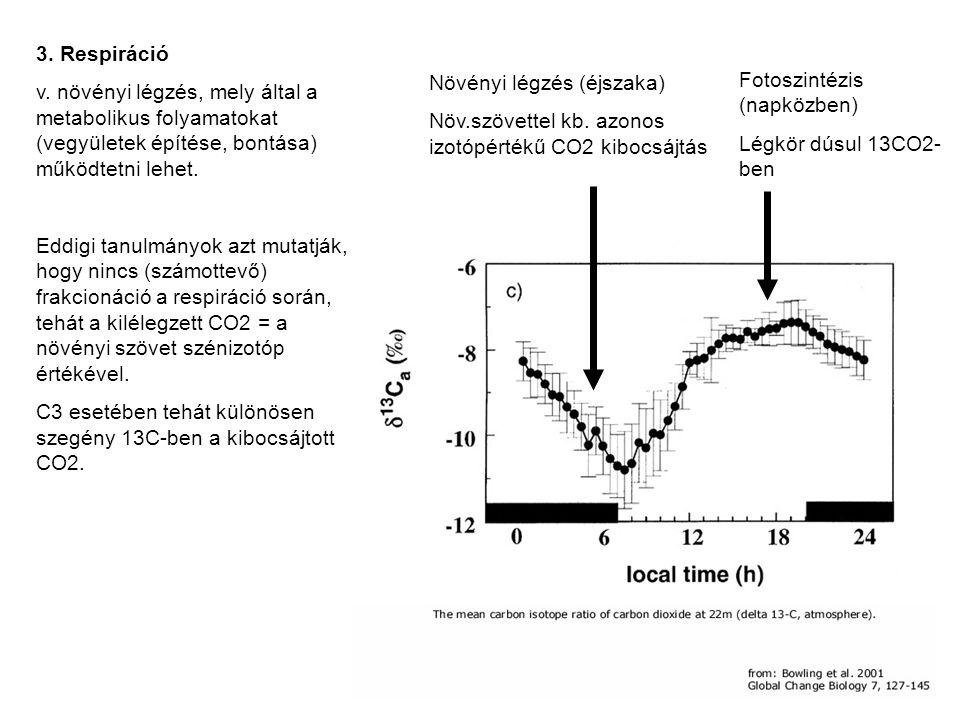 Fotoszintézis (napközben) Légkör dúsul 13CO2- ben Növényi légzés (éjszaka) Növ.szövettel kb. azonos izotópértékű CO2 kibocsájtás 3. Respiráció v. növé