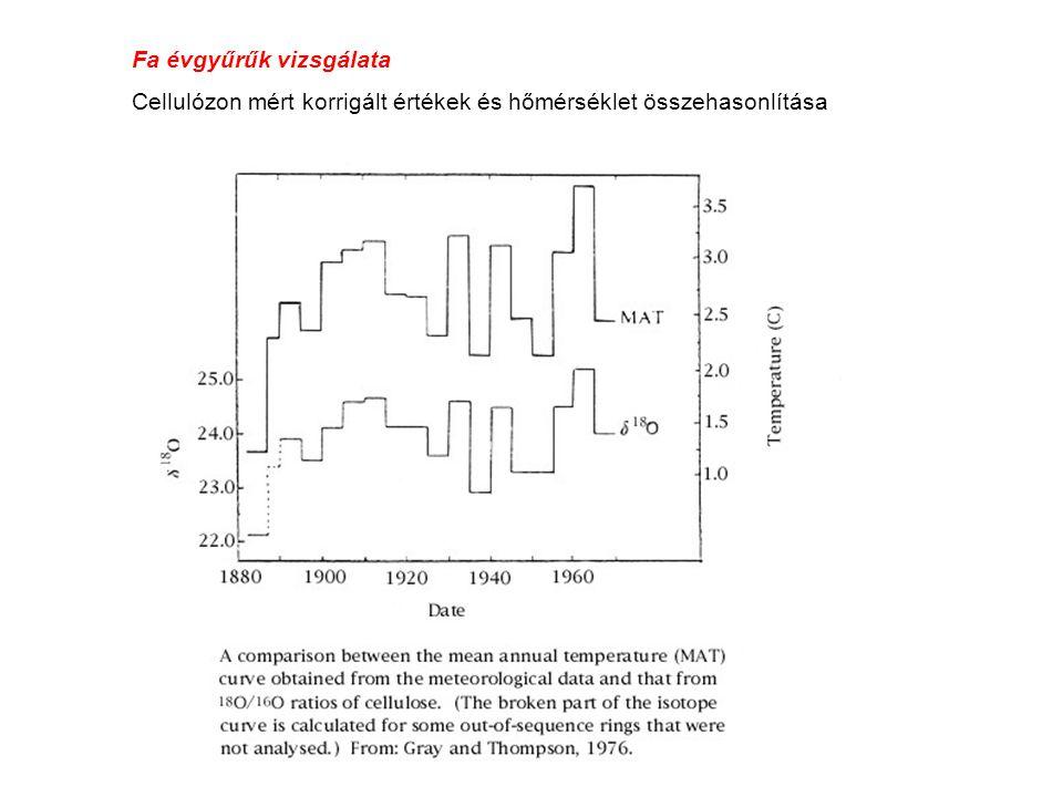 Fa évgyűrűk vizsgálata Cellulózon mért korrigált értékek és hőmérséklet összehasonlítása
