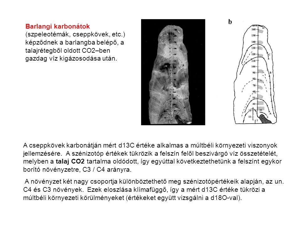 A cseppkövek karbonátján mért d13C értéke alkalmas a múltbéli környezeti viszonyok jellemzésére. A szénizotóp értékek tükrözik a felszín felől beszivá