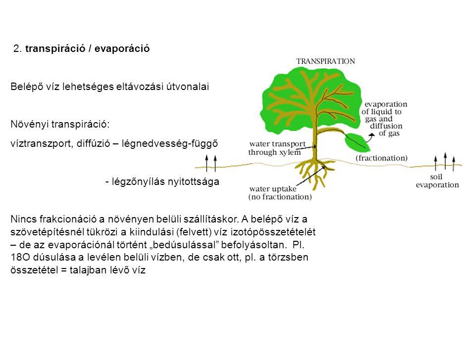 2. transpiráció / evaporáció Belépő víz lehetséges eltávozási útvonalai Növényi transpiráció: víztranszport, diffúzió – légnedvesség-függő - légzőnyíl