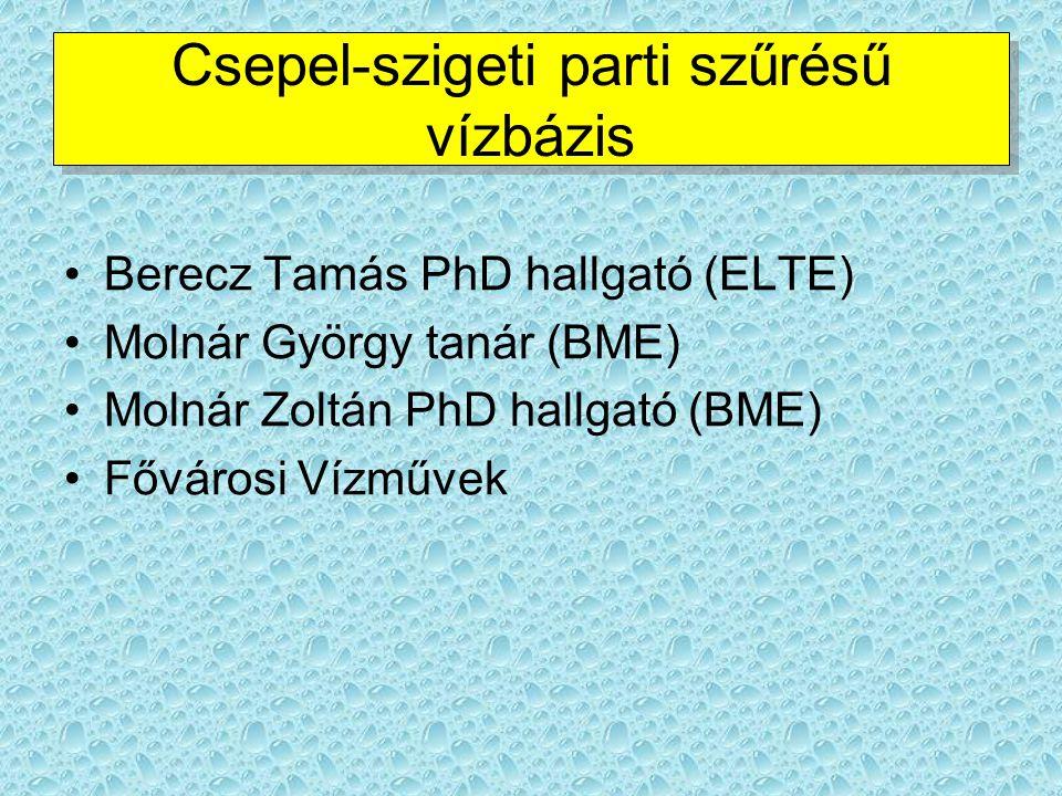 Csepel-szigeti parti szűrésű vízbázis Berecz Tamás PhD hallgató (ELTE) Molnár György tanár (BME) Molnár Zoltán PhD hallgató (BME) Fővárosi Vízművek