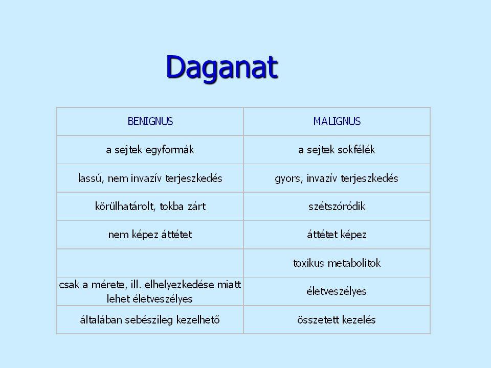 Citosztatikumok n platina vegyületek –cisplatin (CISPLATIN, PLATIDIAM) –carboplatin (CARBOPLATIN, CYCLOPLATIN, PARAPLATIN) n egyéb vegyületek –hydroxycarbamid (LITALIR) –estramustin (ESTRACYT) –tretinoin (VESANOID) –topotecan (HYCAMTIN) –irinotecan (CAMPTO)