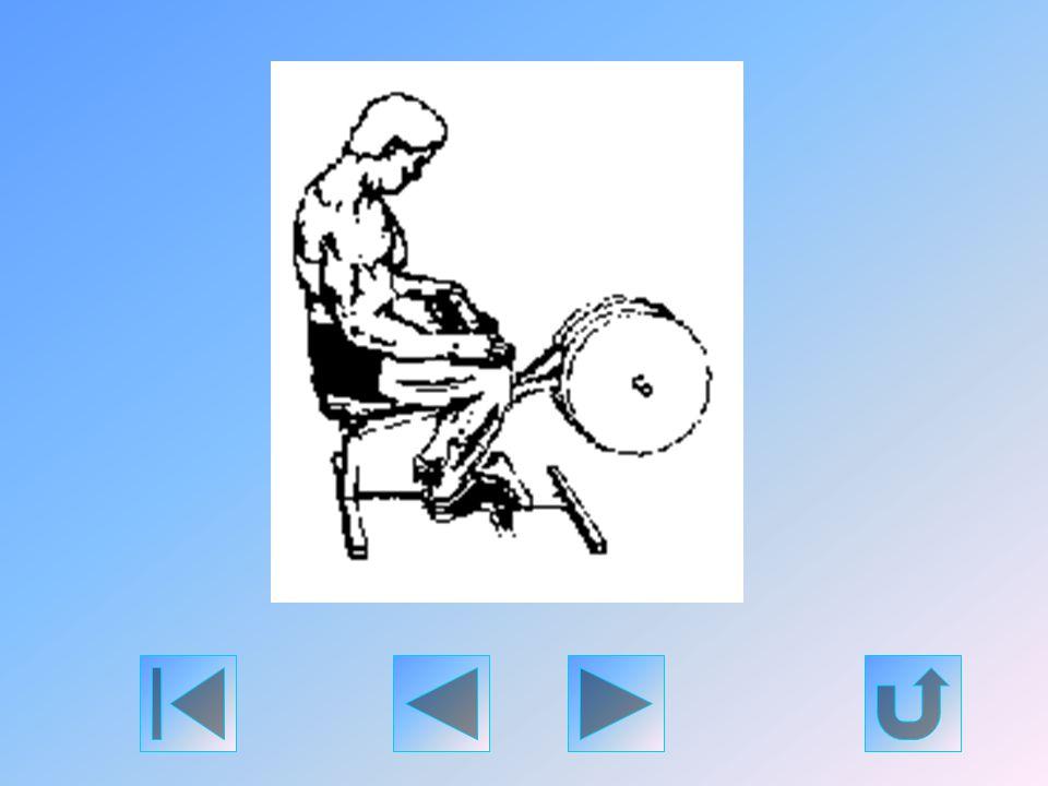 Ezt a gyakorlatot is egy speciális gépen kell végezni. A végzett mozdulat inkább a gázló izmot mozgatja meg. Végezzen annyi ismétlést, amennyit csak b