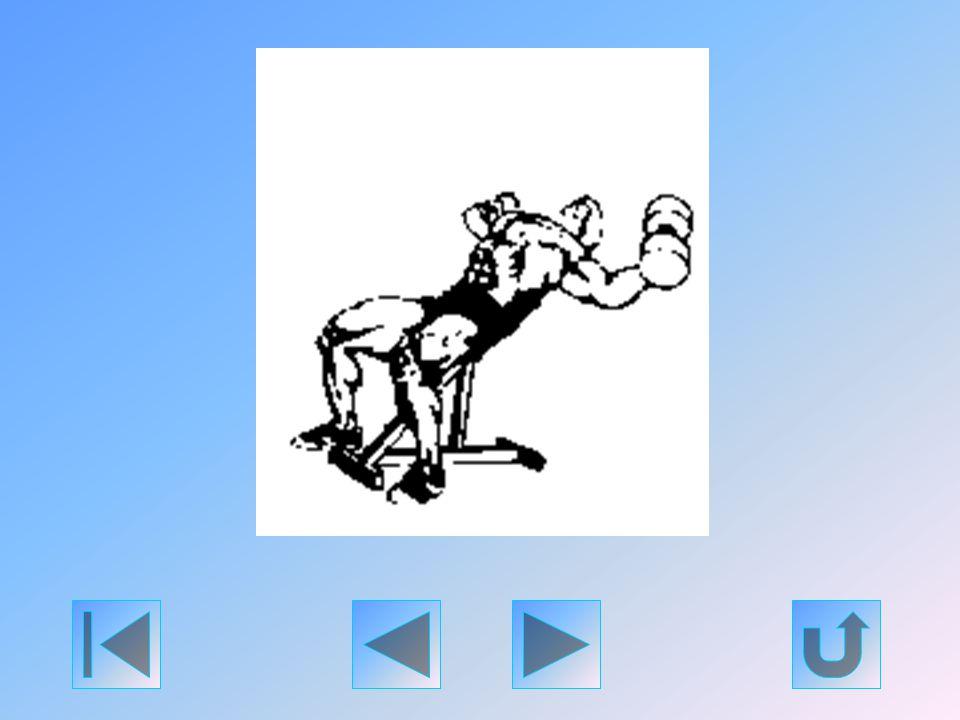 Vegyen fel stabil helyzetet egy ferde padon (legjobb a 30-40 fokos szög). Nyújtson a feje fölé egy pár könnyű súlyzót, majd engedje, hogy karjai lassa