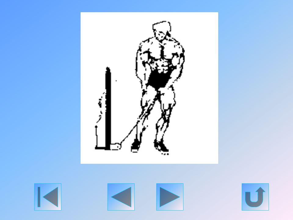 Ez egy remek befejező illetve pumpáló gyakorlat a deltaizmok edzésének a végére. Használjon két expandert (egyet-egyet két lába alá akasztva), vagy al