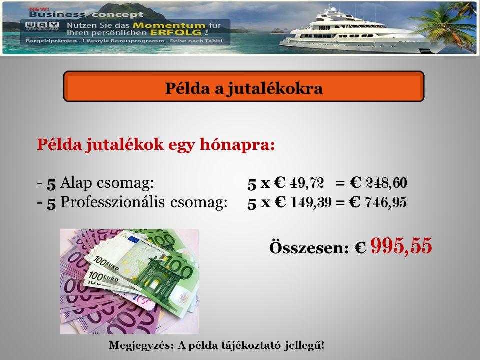 Provisionsbeispiel Példa jutalékok egy hónapra: - 5 Alap csomag: 5 x € 49,72 = € 248,60 - 5 Professzionális csomag: 5 x € 149,39 = € 746,95 Összesen: € 995,55 Példa a jutalékokra Megjegyzés: A példa tájékoztató jellegű!