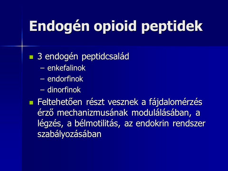 Endogén opioid peptidek 3 endogén peptidcsalád 3 endogén peptidcsalád –enkefalinok –endorfinok –dinorfinok Feltehetően részt vesznek a fájdalomérzés é
