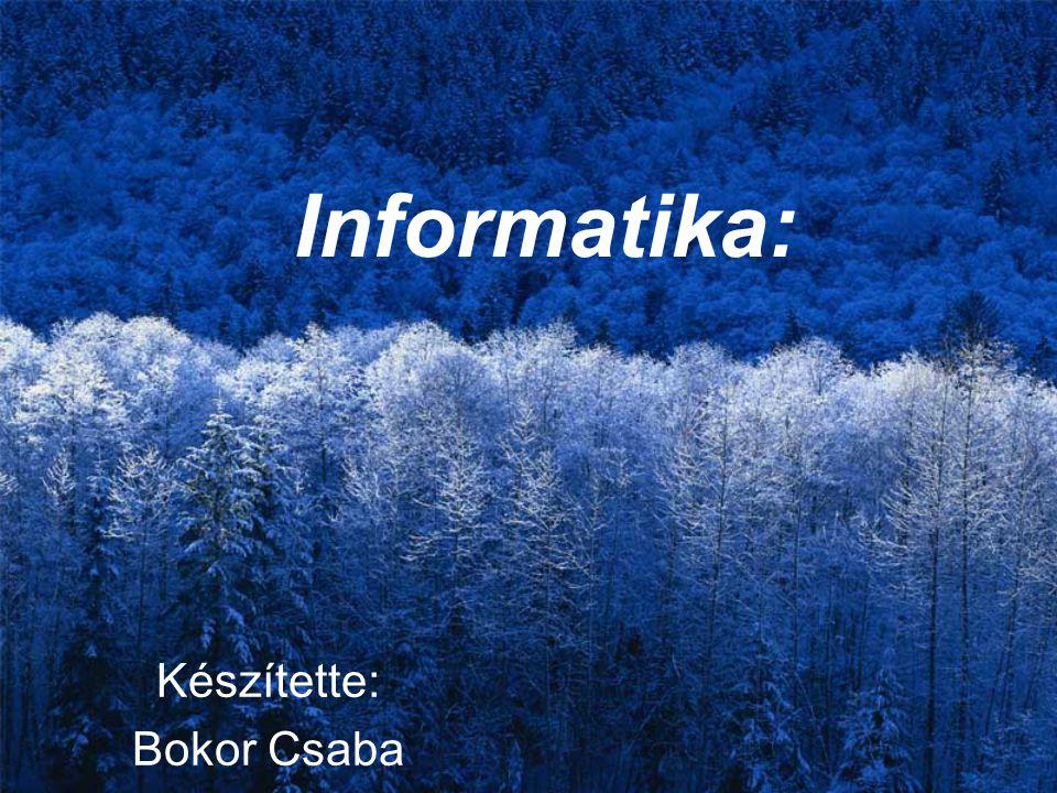Informatika: Készítette: Bokor Csaba
