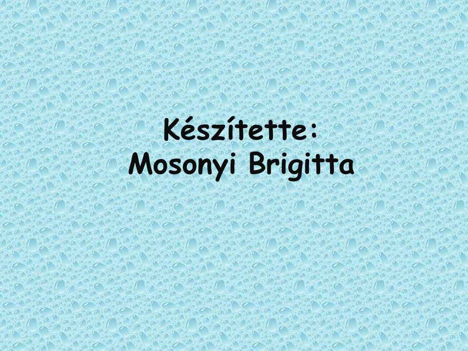 Készítette: Mosonyi Brigitta