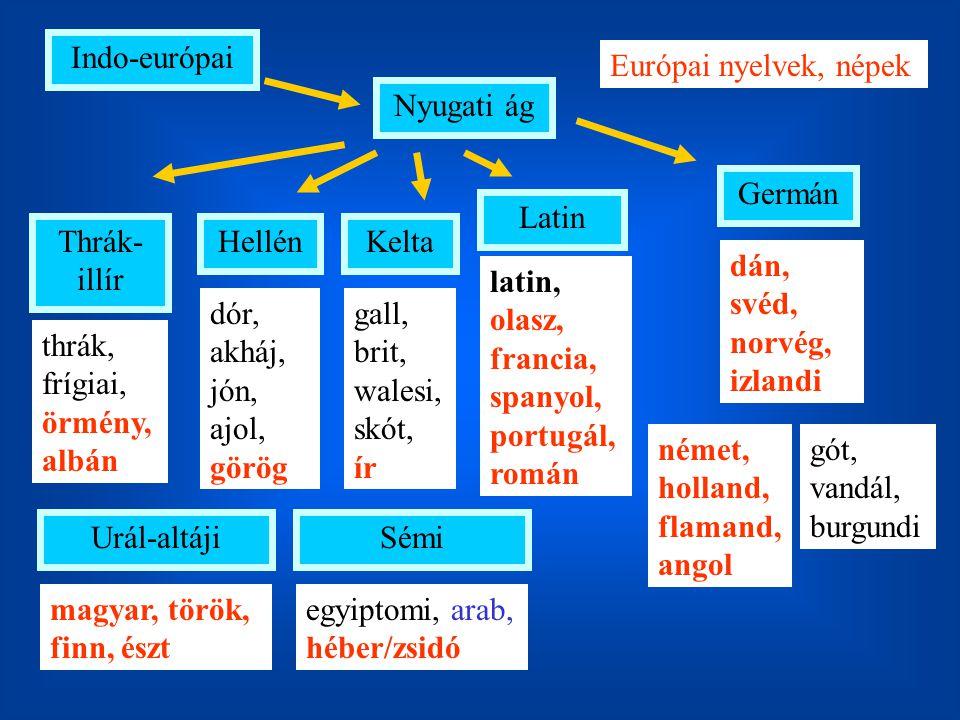Indo-európai Nyugati ág Thrák- illír HellénKelta Latin Germán német, holland, flamand, angol Európai nyelvek, népek thrák, frígiai, örmény, albán gall, brit, walesi, skót, ír dór, akháj, jón, ajol, görög latin, olasz, francia, spanyol, portugál, román gót, vandál, burgundi dán, svéd, norvég, izlandi Urál-altáji magyar, török, finn, észt Sémi egyiptomi, arab, héber/zsidó