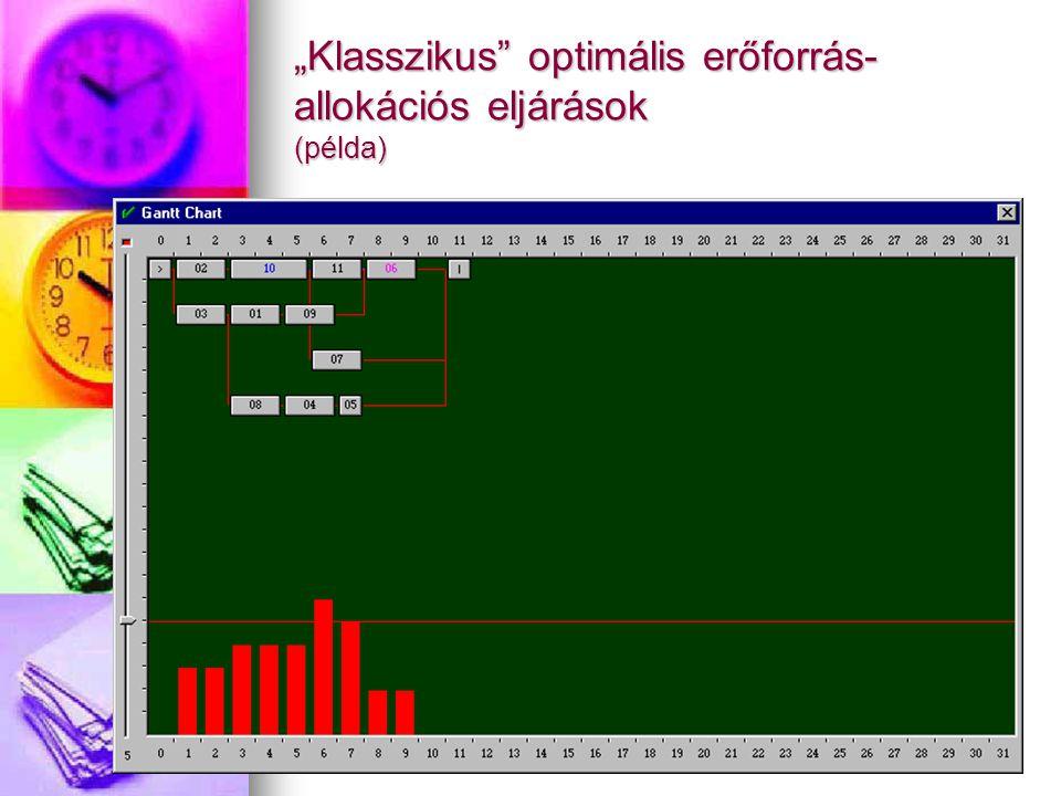 """""""Klasszikus"""" optimális erőforrás- allokációs eljárások (példa)"""