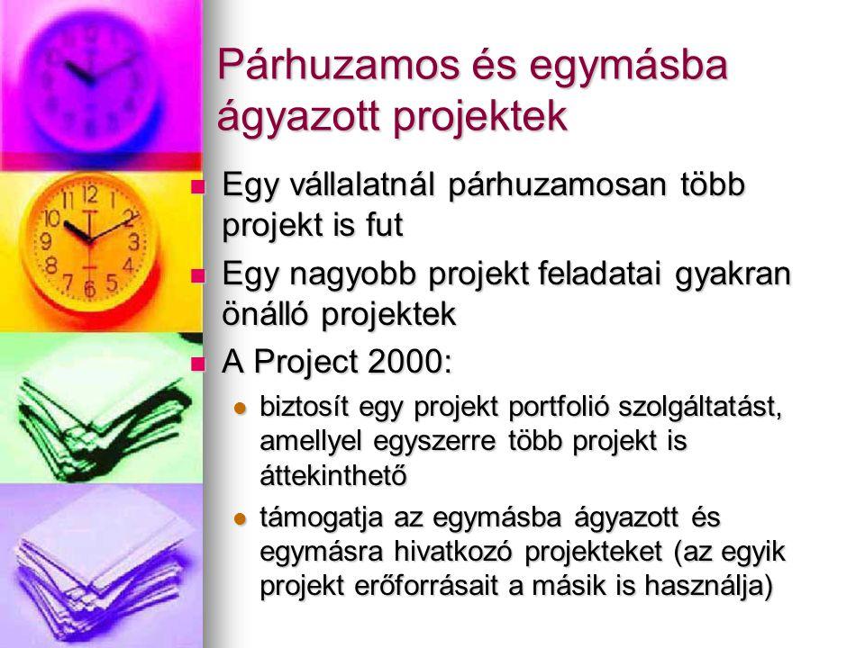 Párhuzamos és egymásba ágyazott projektek Egy vállalatnál párhuzamosan több projekt is fut Egy vállalatnál párhuzamosan több projekt is fut Egy nagyob