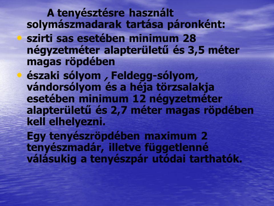 A tenyésztésre használt solymászmadarak tartása páronként: szirti sas esetében minimum 28 négyzetméter alapterületű és 3,5 méter magas röpdében északi